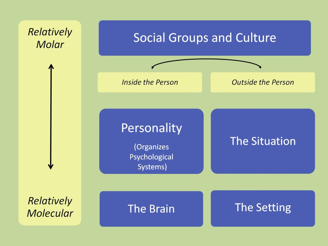 definition and related theories of personality psychology essay What factors shape personality essay personality psychology: essay given that the definition of personality includes behaviour negative emotionality.